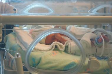Un-modelo-matematico-estabiliza-la-temperatura-de-los-bebes-en-las-incubadoras_image_380