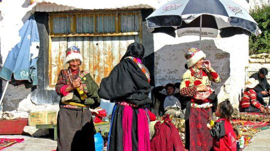 Genetica-Himalaya-Comunidad_Andina-Ciencias_naturales-Investigacion_218988590_35110272_1024x576