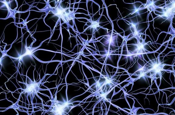 Oleadas-de-actividad-neuronal-dan-nuevas-pistas-sobre-el-alzheimer_image_380
