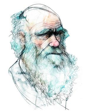 La-vision-mas-personal-de-Darwin_image_380